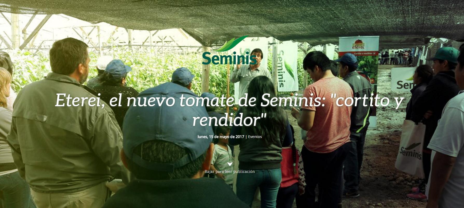 dia de campo eterei, el nuevo tomate de seminis: cortito y rendidor