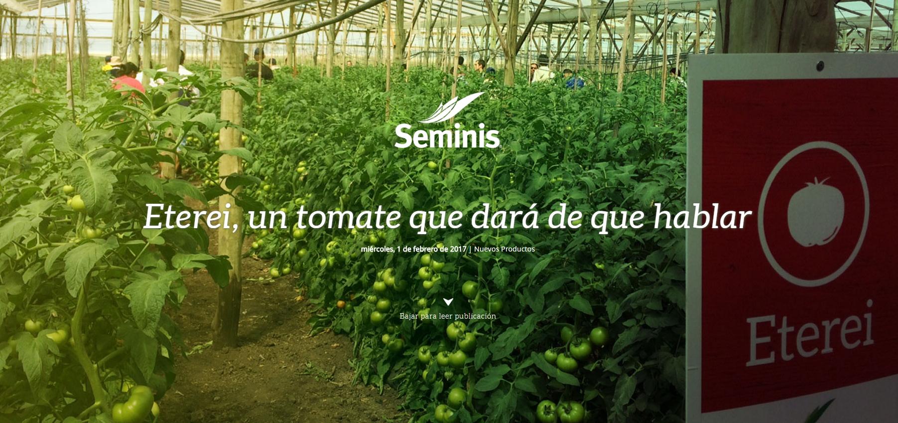 Día de campo Eterei, un tomate que dará de qué hablar